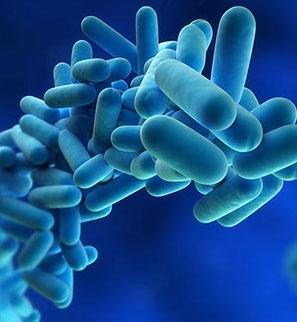 sanificazione_batteri-crop-u5160.jpg