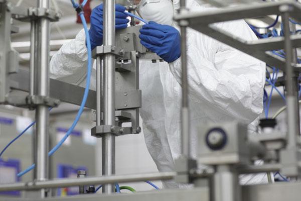 disinfestazione di impiantii industriali - TOPI: La tua Impresa è al sicuro?