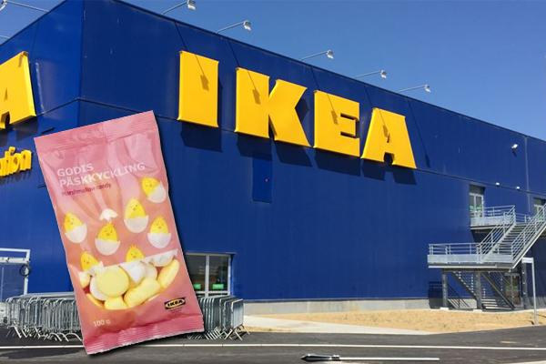 ikea topi nello stabilimento 1 - IKEA,  topi nello stabilimento!